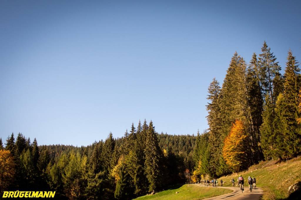 Fahrt durch den Schwarzwald während des Votec Gravel Fondos 2018