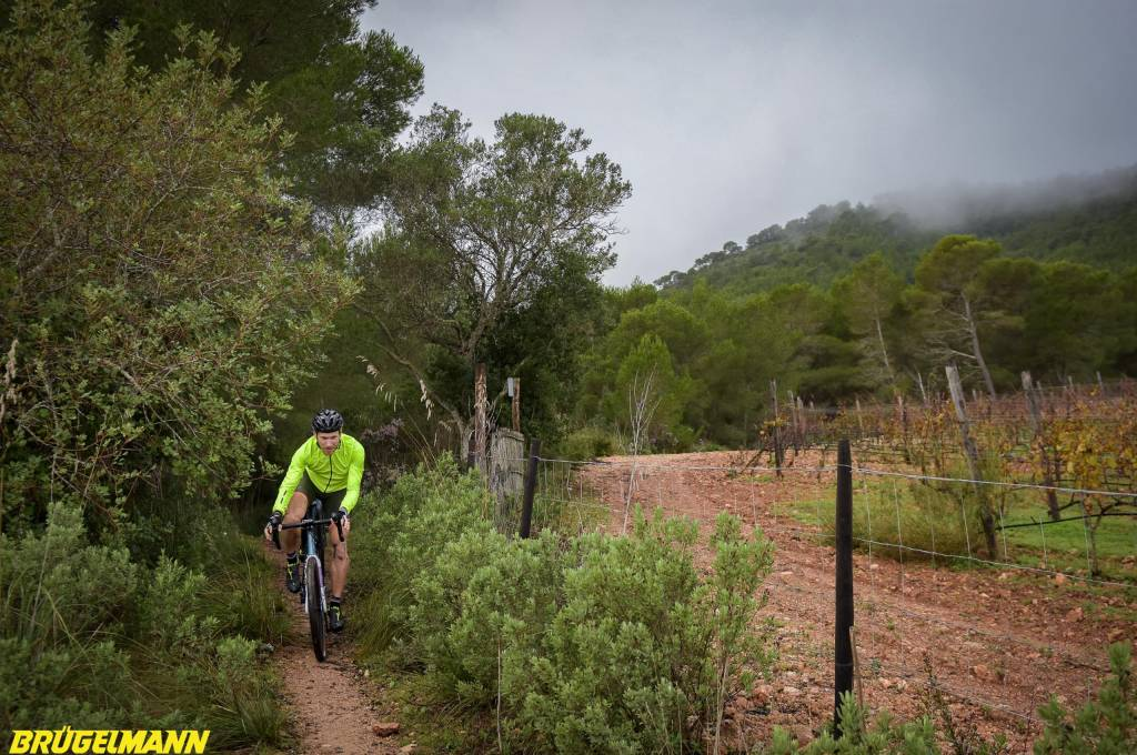 Kontrast zum Fahren auf der Zwift Rolle - draußen beim Graveln auf Mallorca