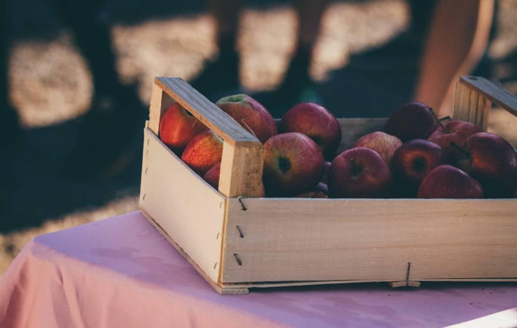 Rote Äpfel in einer Kiste beim Votec Gravel Fondo 2018