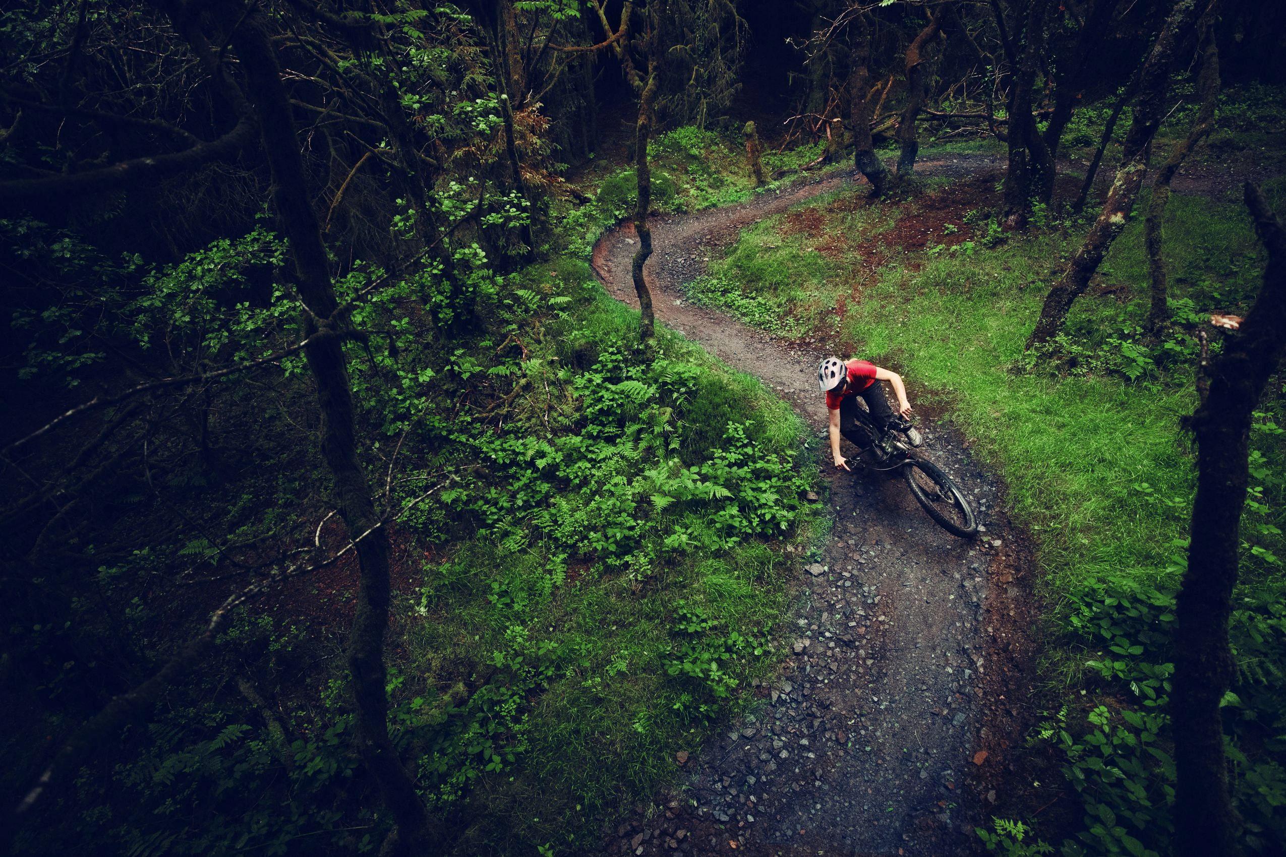 Cannondale Habit NEO 2020 auf einem Trail