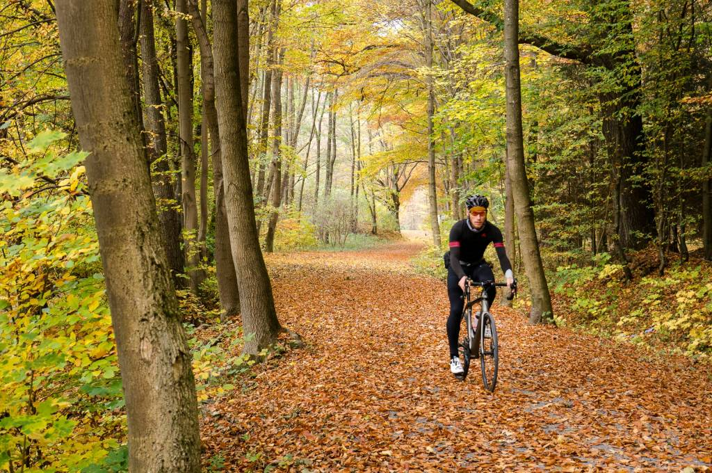Trek Emonda SL6 Disc im Thüringer Wald