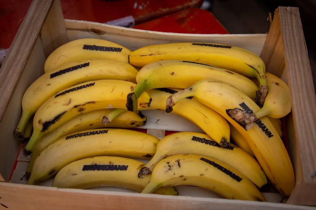Bananen beim Votec Gravel Fondo 2018