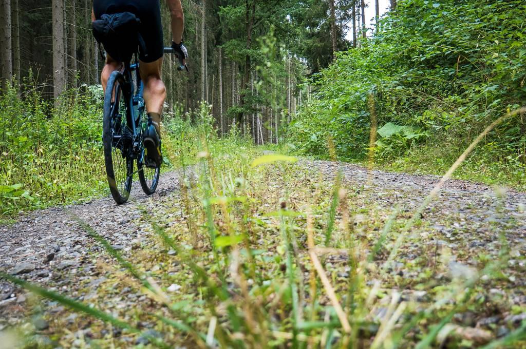 Gravelbiker auf Schotterweg im Wald