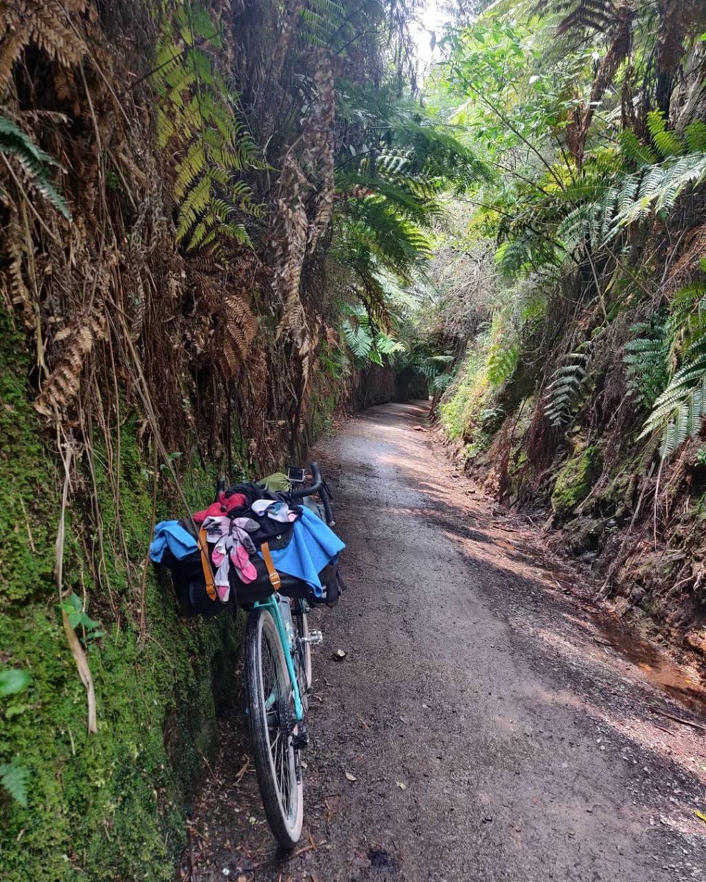 Joanna Bikepacking Neuseeland Kona Rove