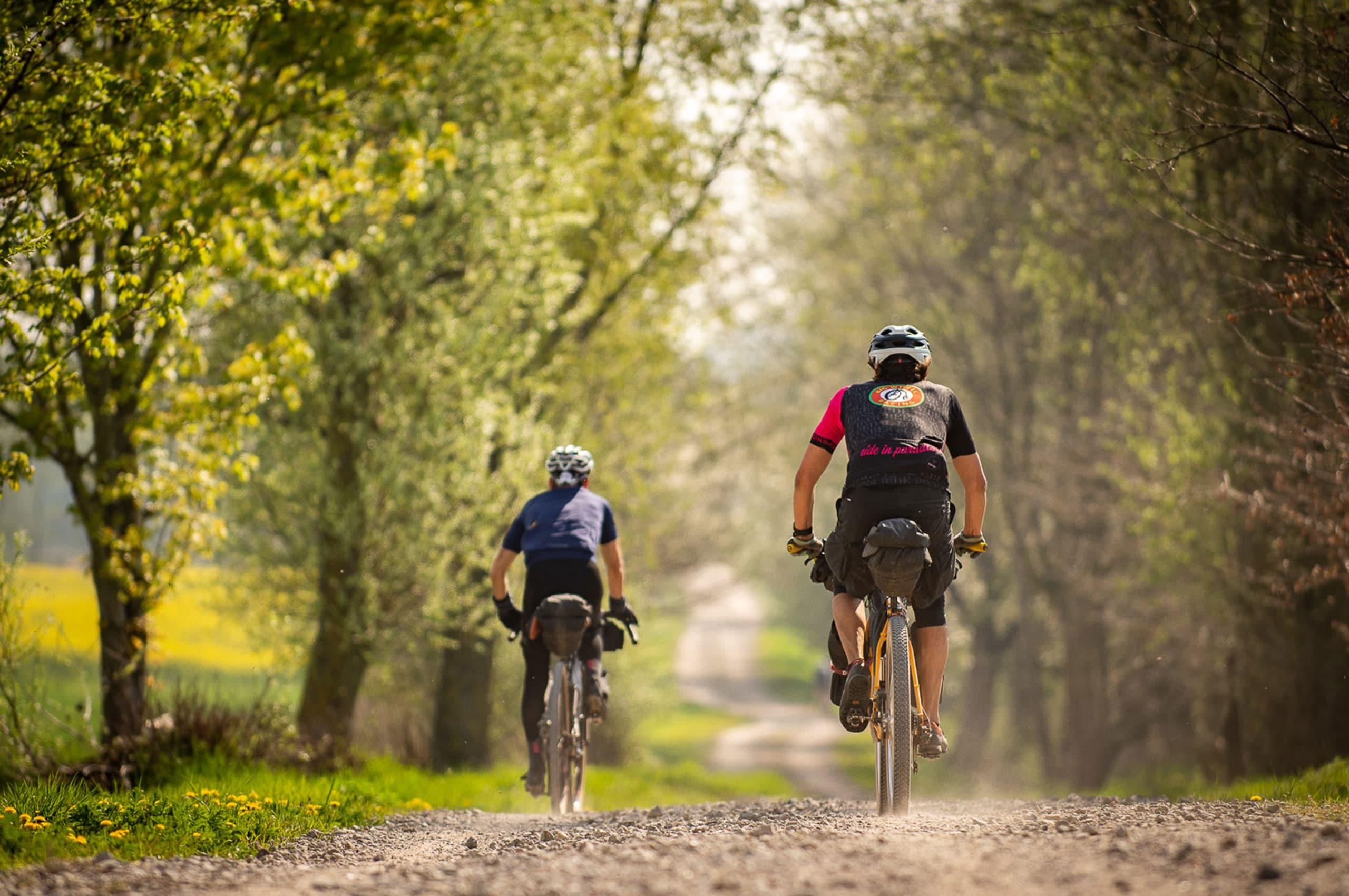Bikepacking Radfahrer Schotterweg Allee