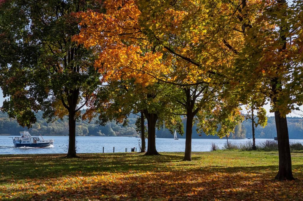 See Schiff Bäume Herbst