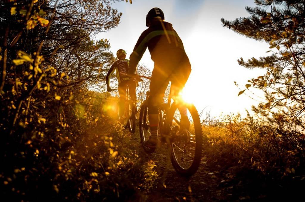 Mountainbike Sonnenuntergang Wald