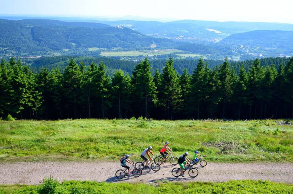 Familie Fahrrad Berge Wald Schotterweg