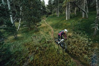 Orbea Rise E-MTB Trail Wald