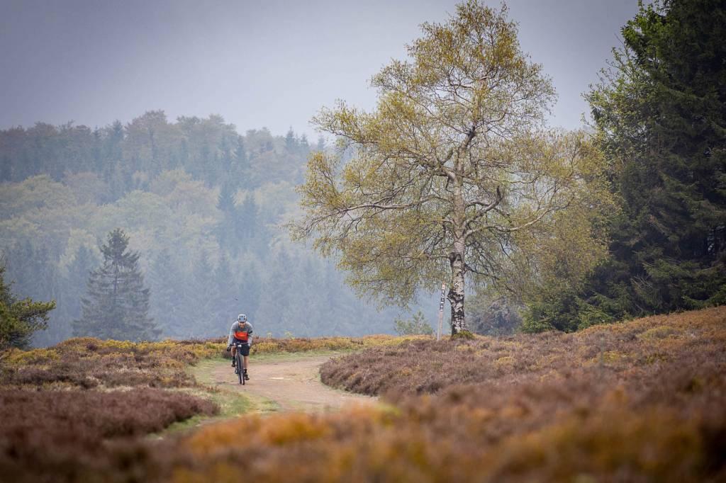 Mountainbike Tour Sauerland Rothaarsteig