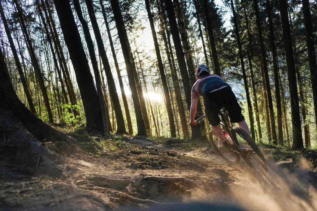 Mountainbike-Trail-Sonne