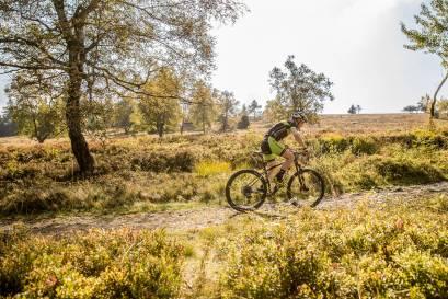 Goldener Herbst Mountainbiketour